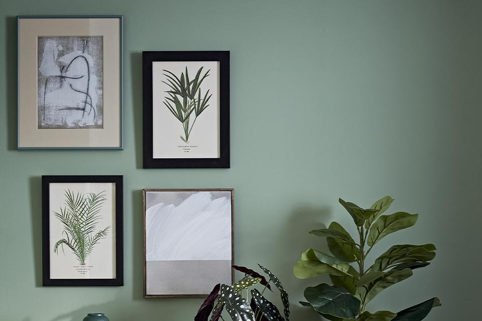 Four modern and botanical prints arranged on a green wall above plants in mismatched frames.