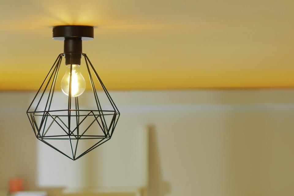 Image of a black industrial style ceiling light with a caged shade.
