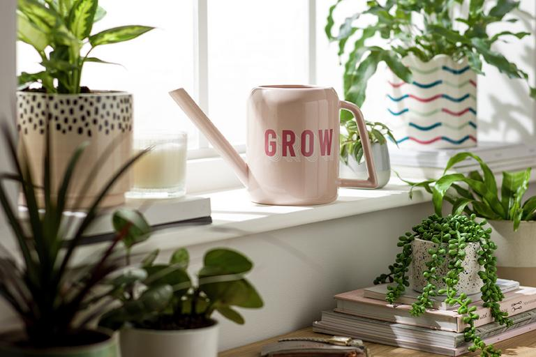 A window sill with lots of small indoor plants and a mini pale pink watering can.