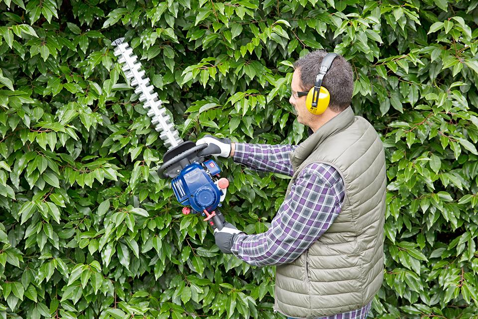 Shop petrol hedge trimmers.