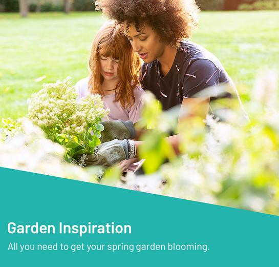 Garden Inspiration All you need to get your spring garden blooming.