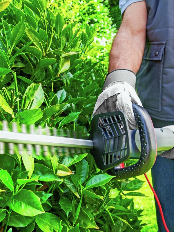 Spear & Jackson 66cm Corded Hedge Trimmer - 600W.