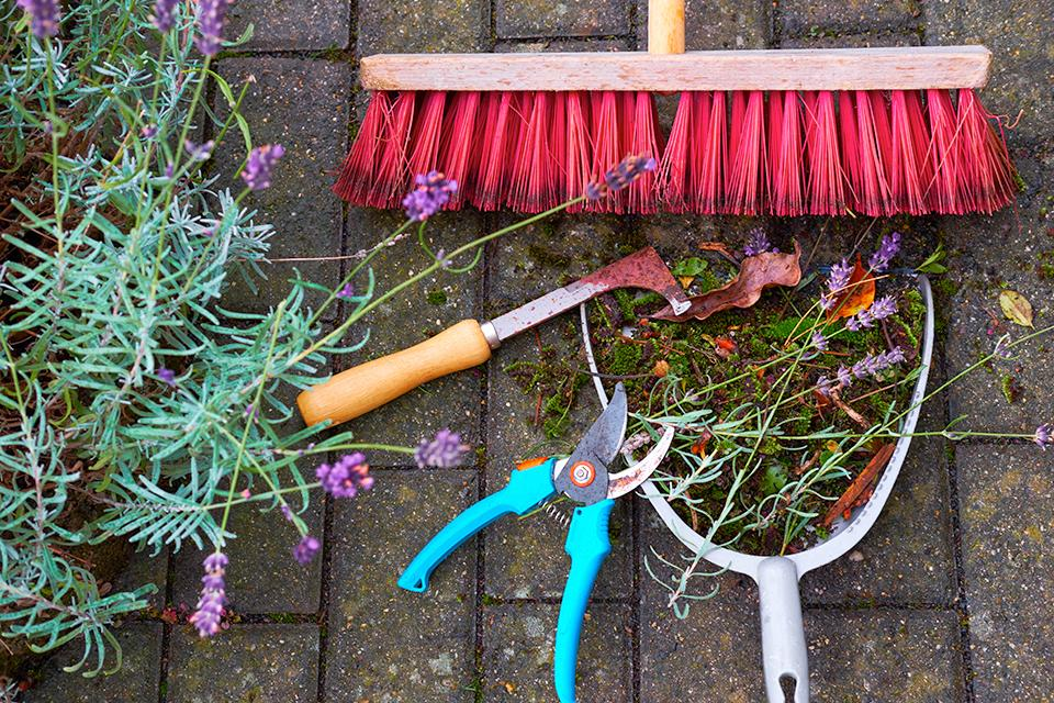Gardening tools on pavement.