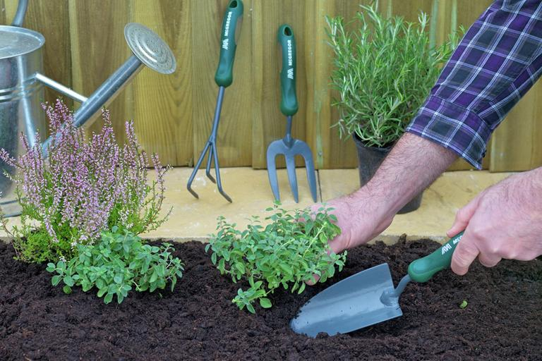 Shop weeding tools.