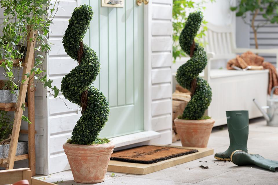 Spiral faux hedges in pots either side of door.