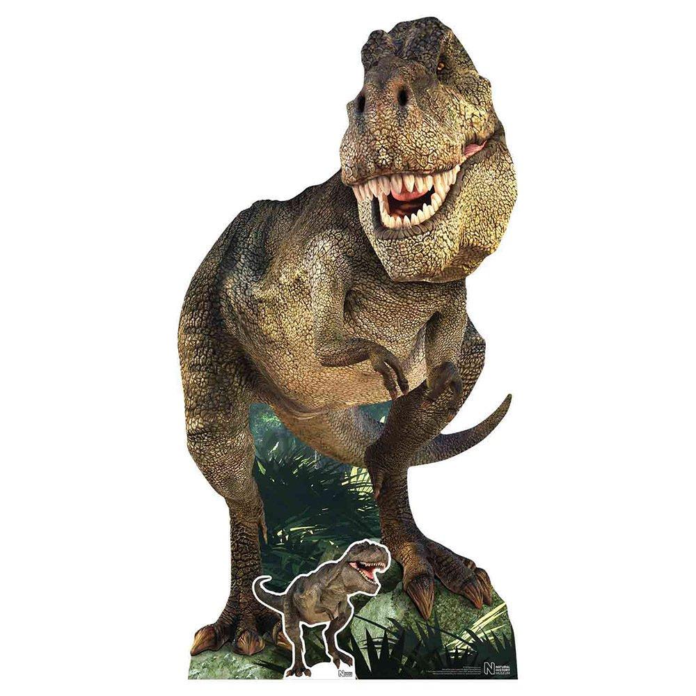 Star Cutouts Natural History Museum T-Rex Cardboard Cutout