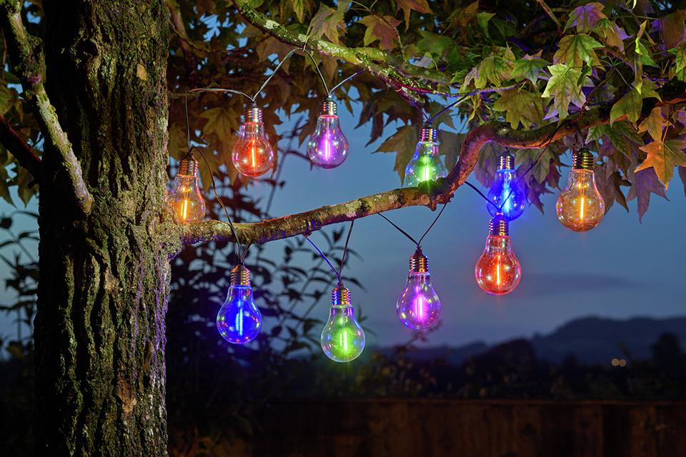 Colourful lightbulb fairy lights hanging from a tree.