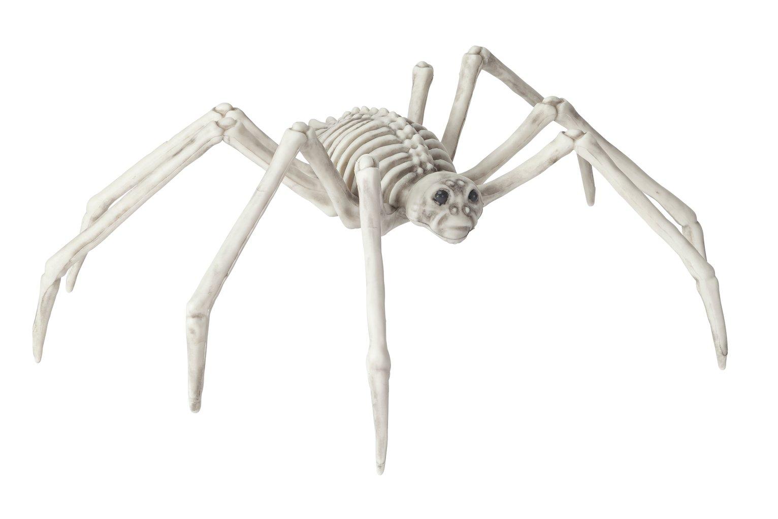Argos Home Halloween Spider Skeleton