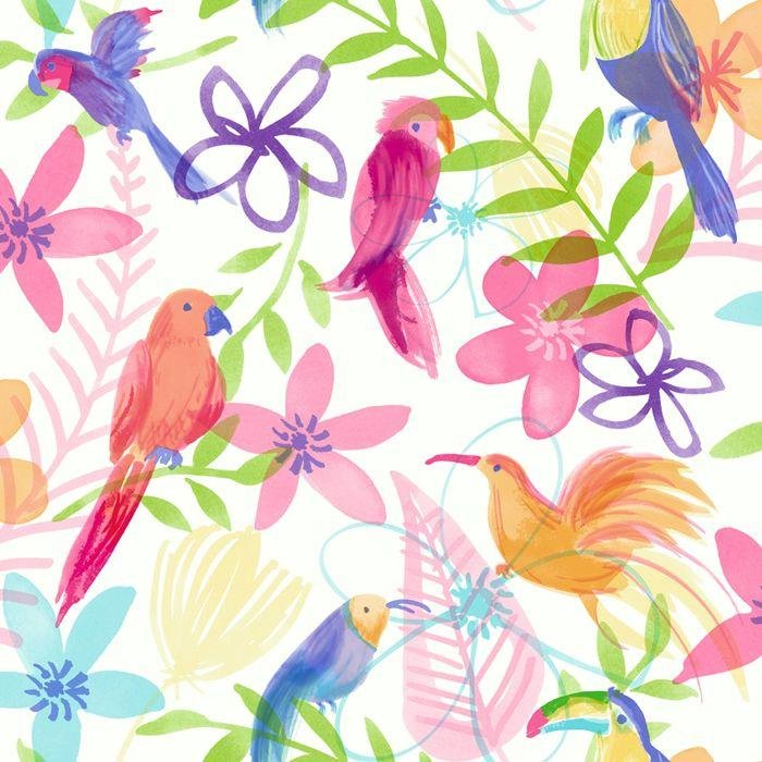 arthouse polly parrot wallpaper  multicoloured.