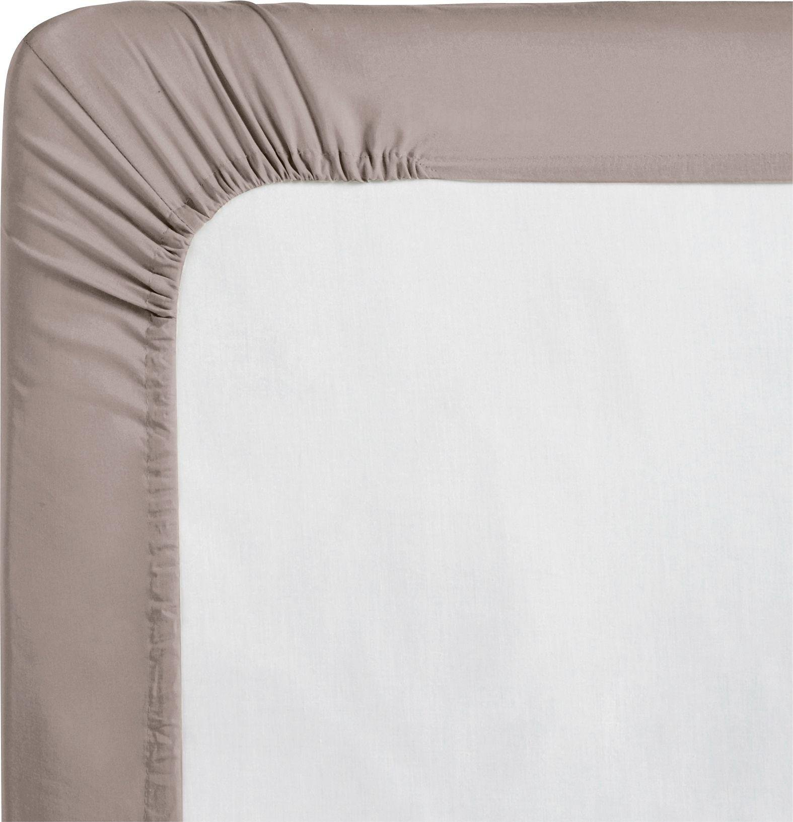 colourmatch  cafe mocha fitted  sheet  double