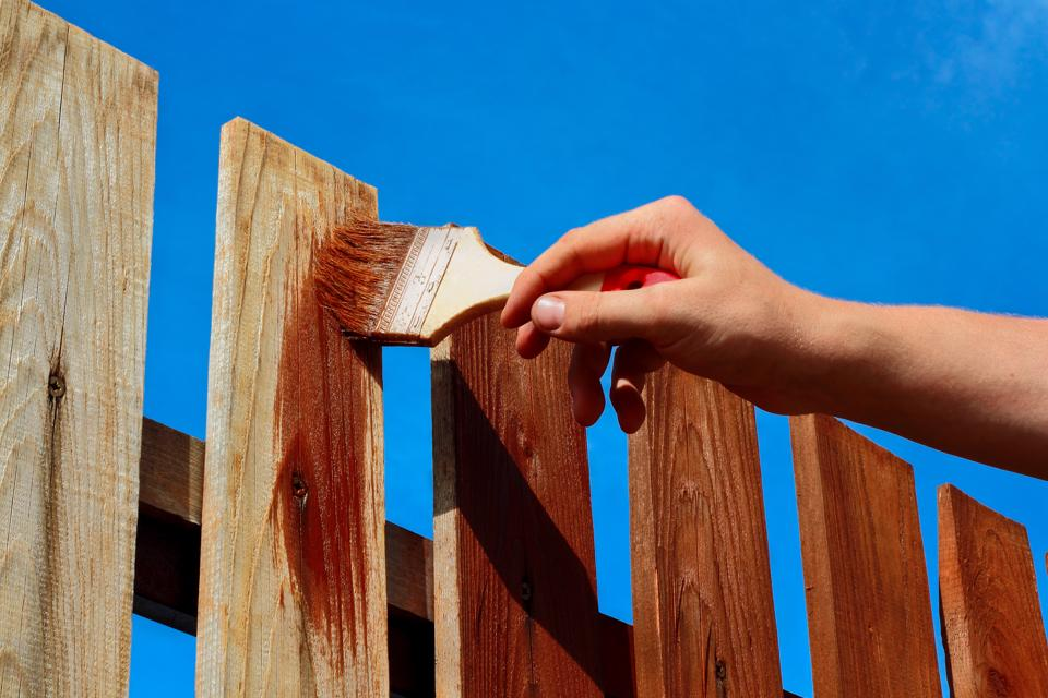Man staining wooden garden fence.