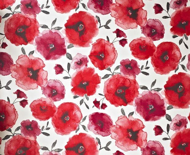 superfresco wallpaper sample  poppies red.