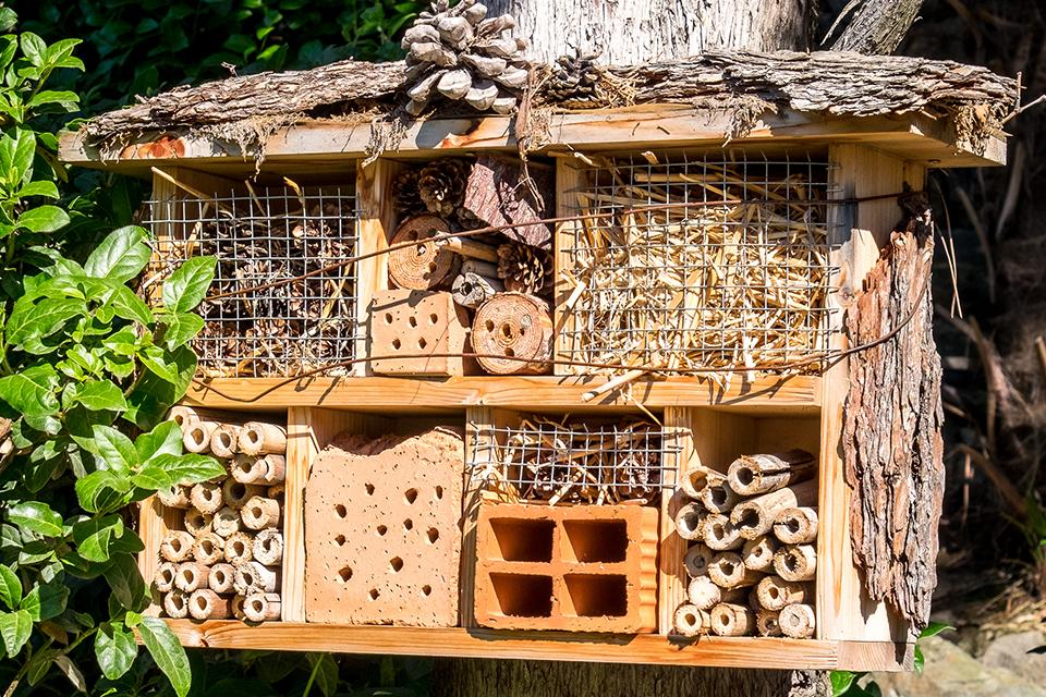 A homemade bug house made from wood, bricks and twigs.