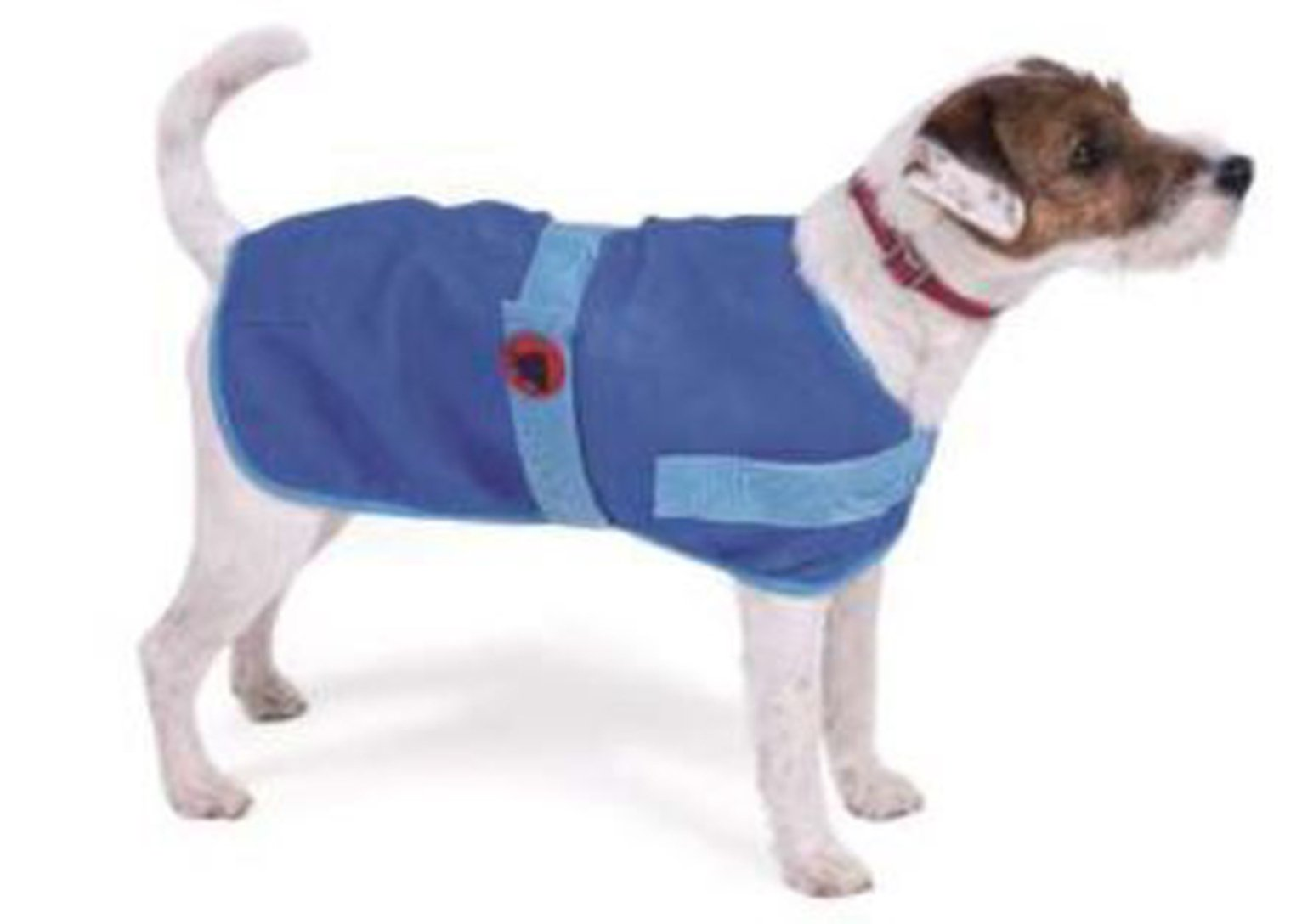 Petface Dog Cooling Coat