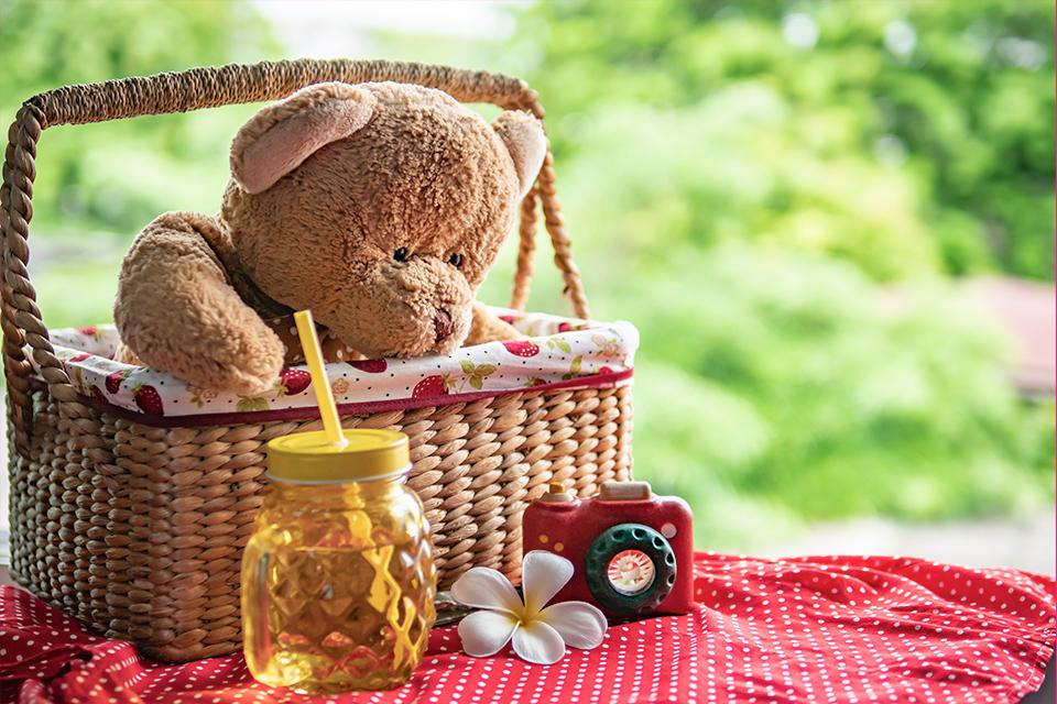 Teddy bear's picnic.