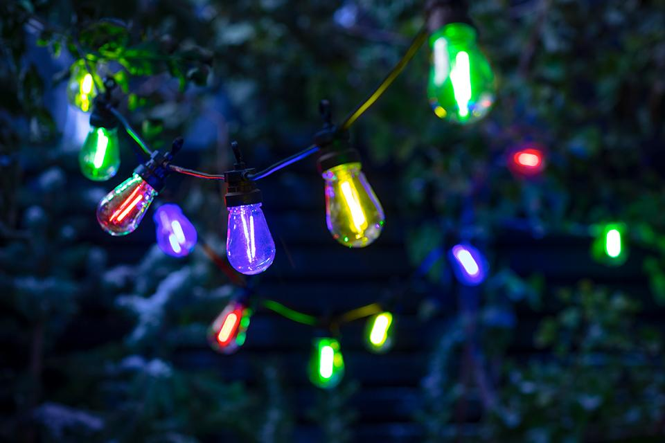 An image of a string of blue, yellow, green and red bulb lights hanging from outdoor trees.