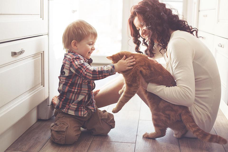 Woman cuddling cat with boy stroking cat.