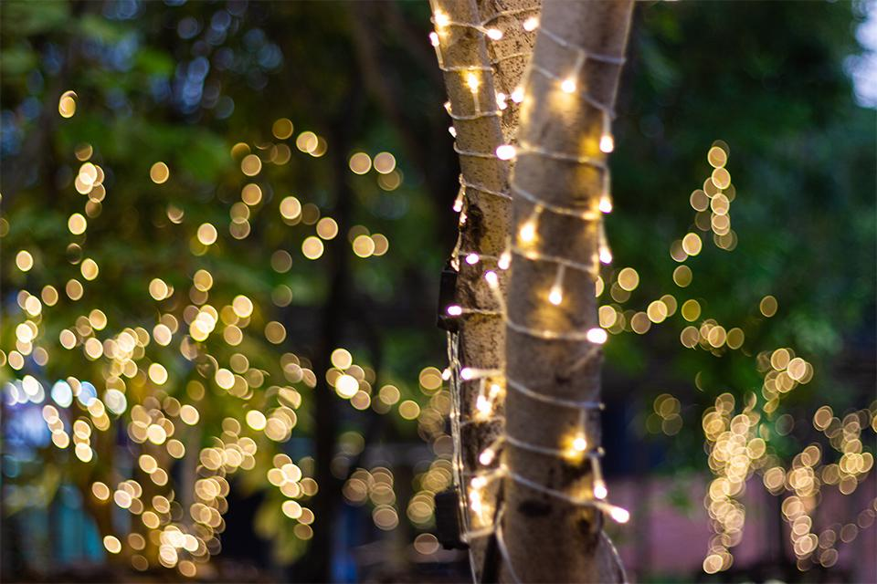 Outdoor Christmas Decorations Images.Outdoor Christmas Lights Decorations Argos