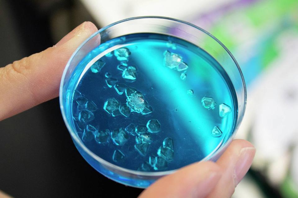 A toy petri dish with blue liquid and crystals.