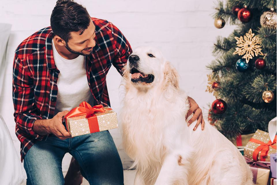 Man petting golden retriver next to Christmas tree, whilst holding a Christmas present in his right hand.