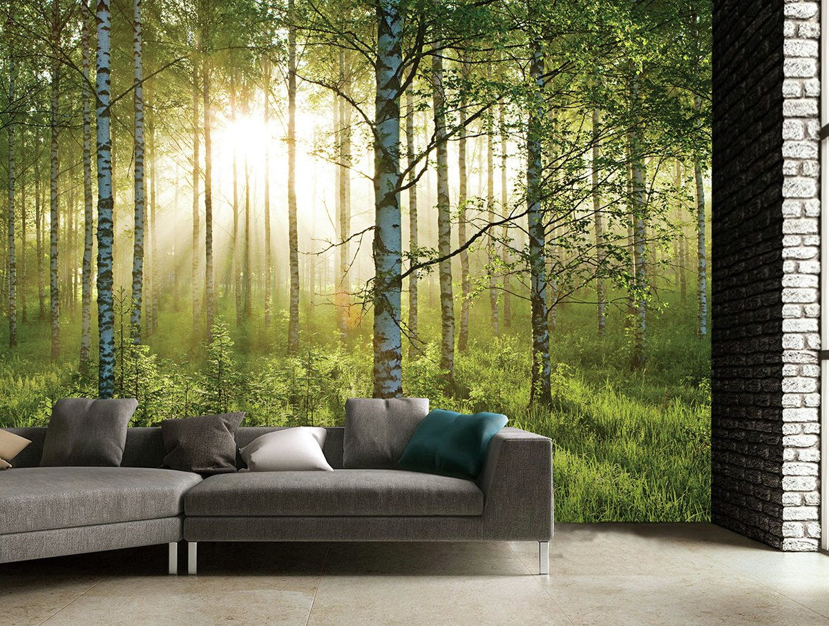 Buy 1Wall Forest Wall Mural Murals and wall stickers Argos