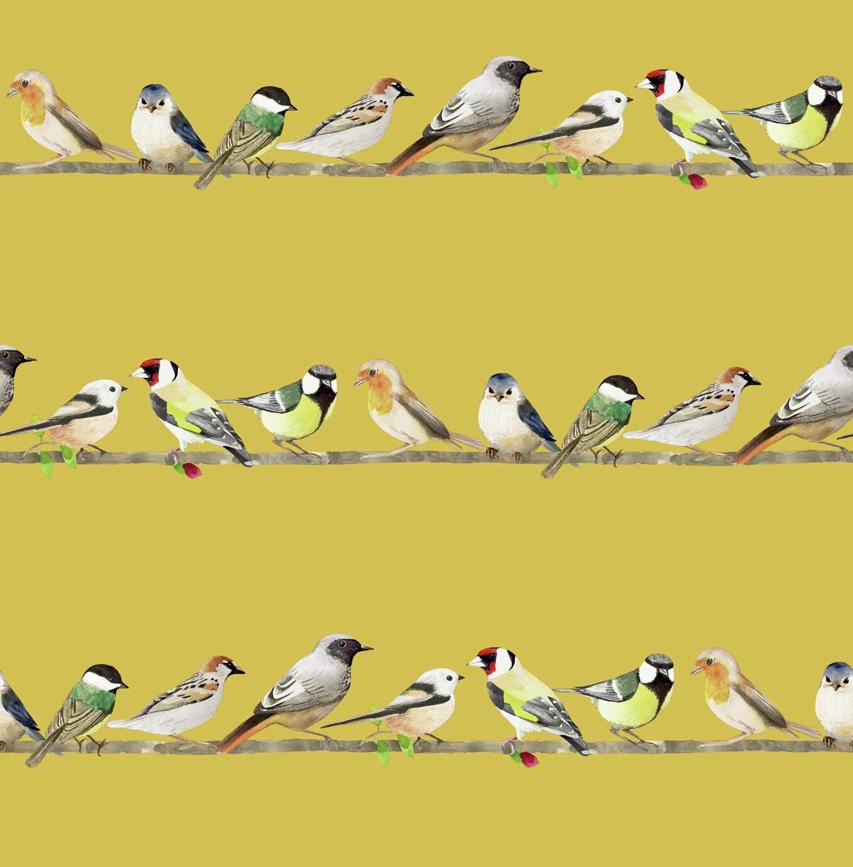 Fresco Tweeting Ochre Watercolour birds Wallpaper