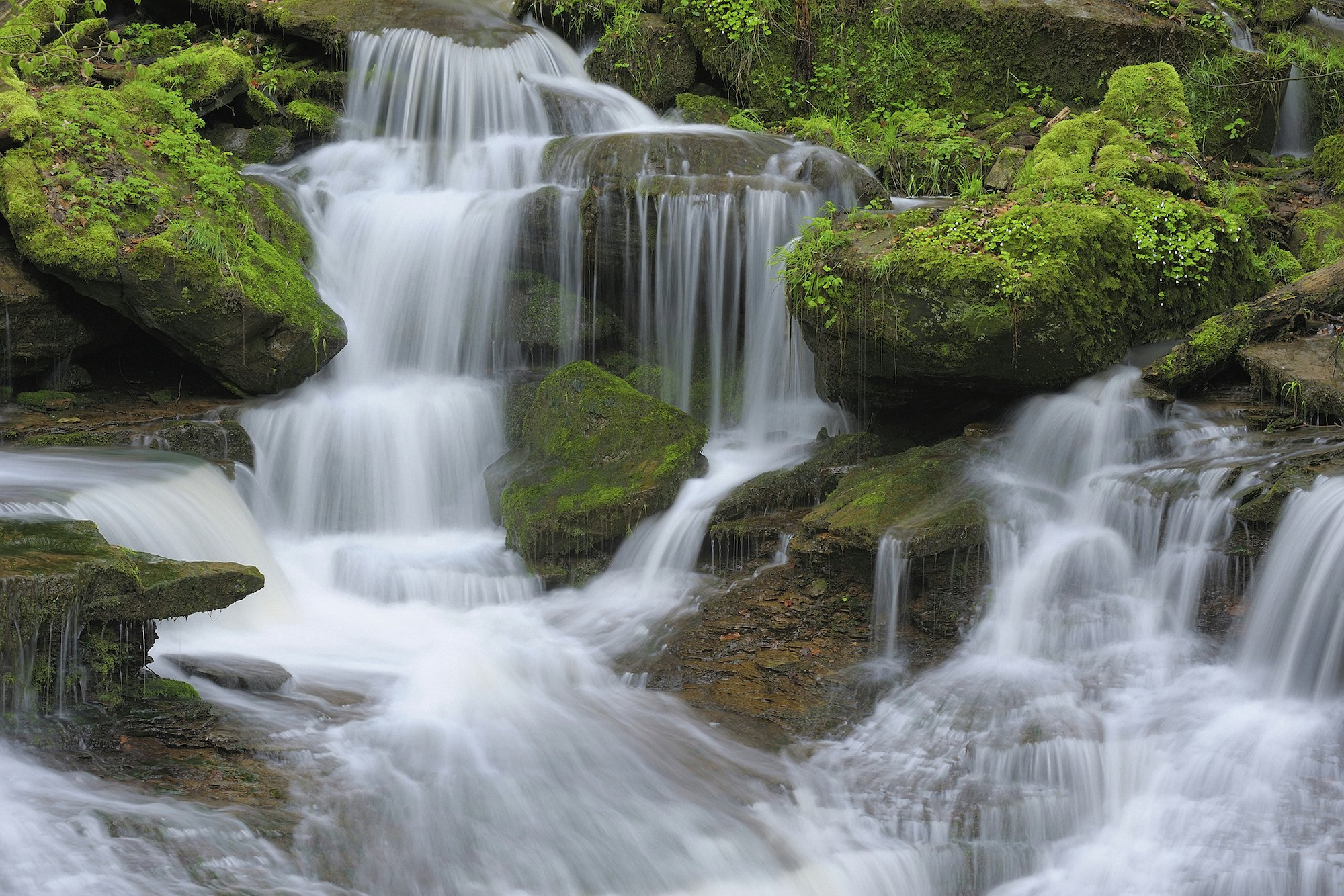 1Wall - Waterfall Giant - Wall Mural
