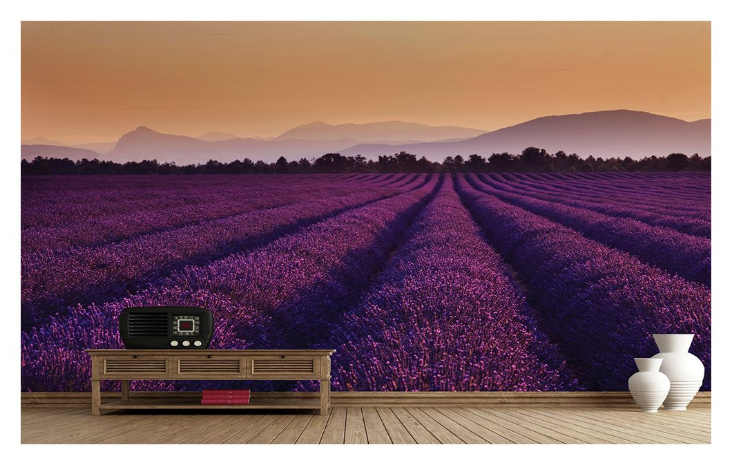 1wall  lavender fields  wall mural