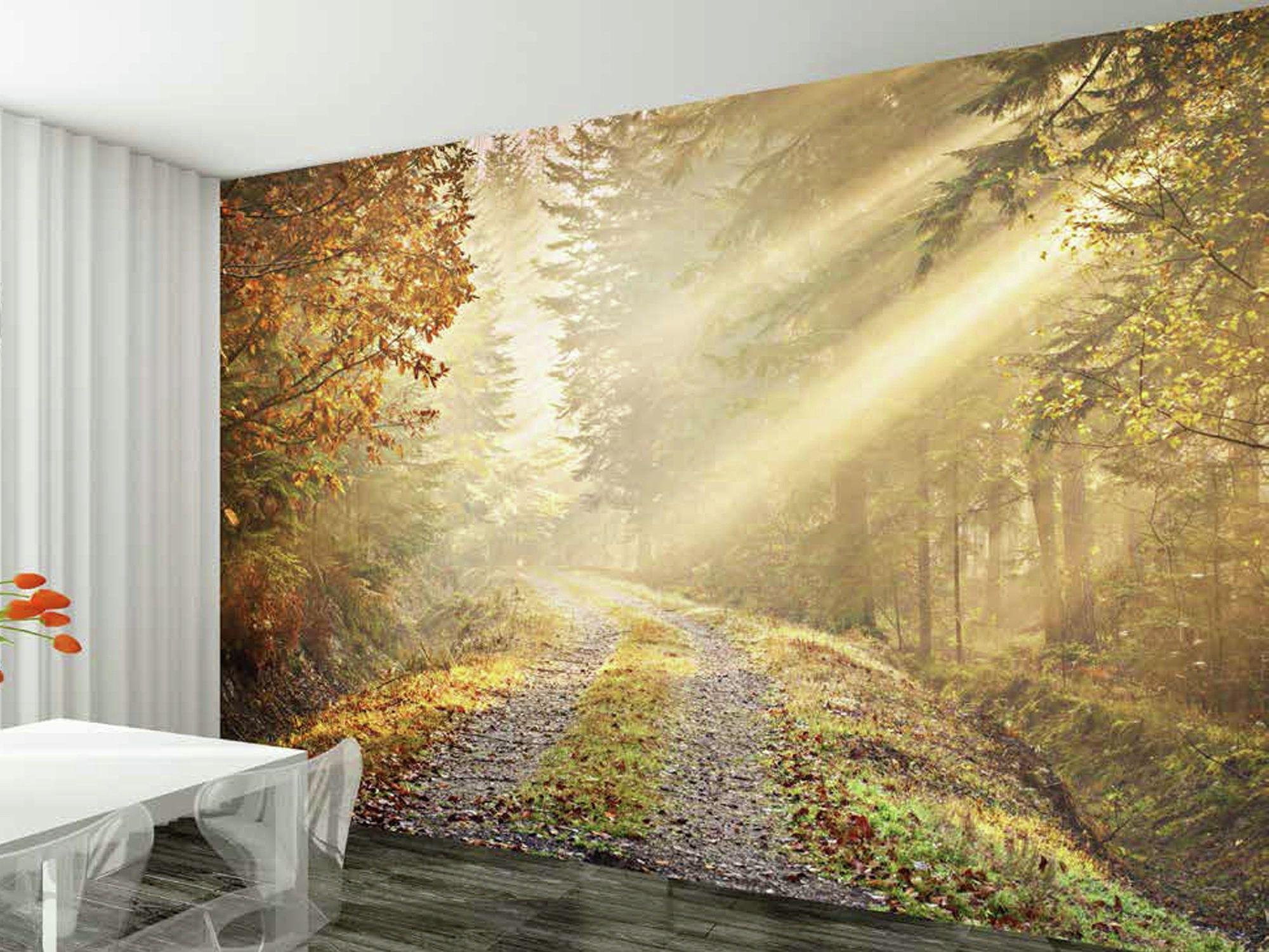 1Wall - Winter Forest Road - Wall Mural