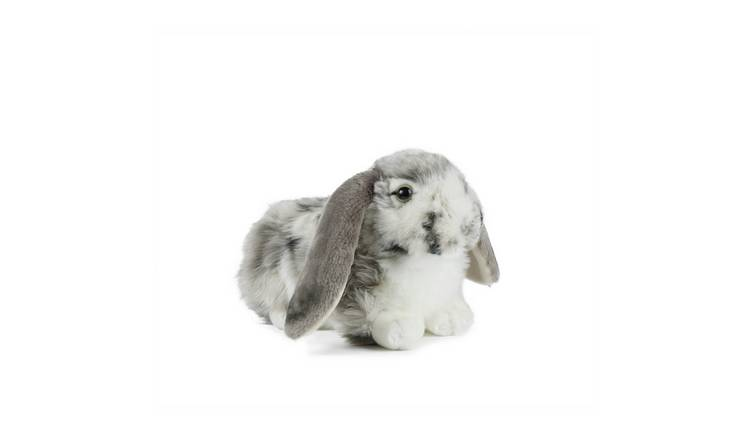 Living Nature Dutch Lop Ear Rabbit - Grey
