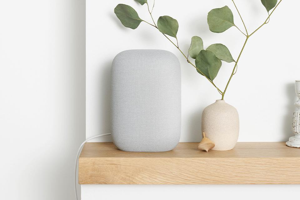 Google Nest Smart Speakers