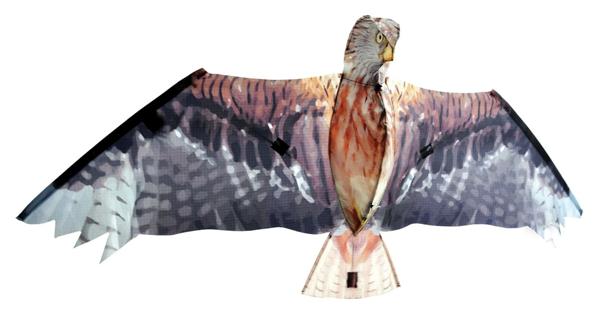 Image of Brookite - Red Kite Kite - 105 x 47cm