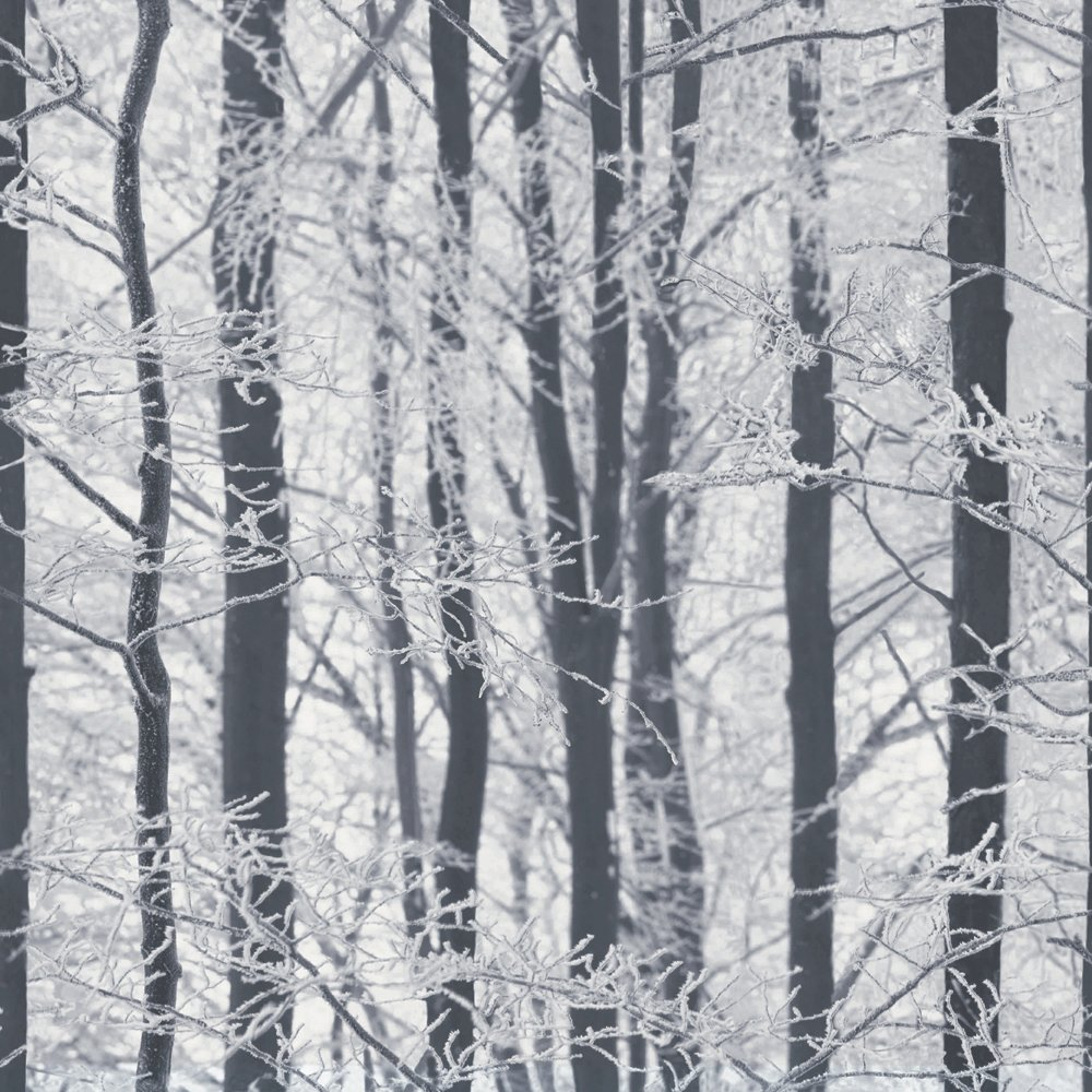 Image of Arthouse Imagine Frosted Wood Silver Wallpaper.