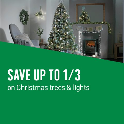 Save up to 1/3 on Christmas trees and lights.