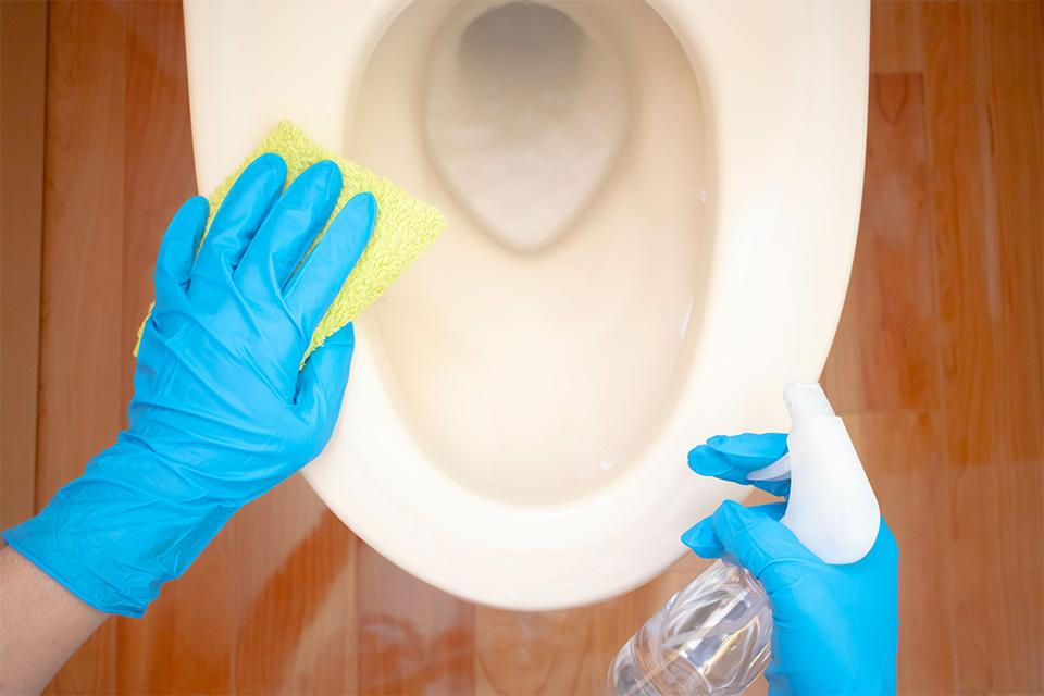 A person in rubber gloves cleaning a toilet.