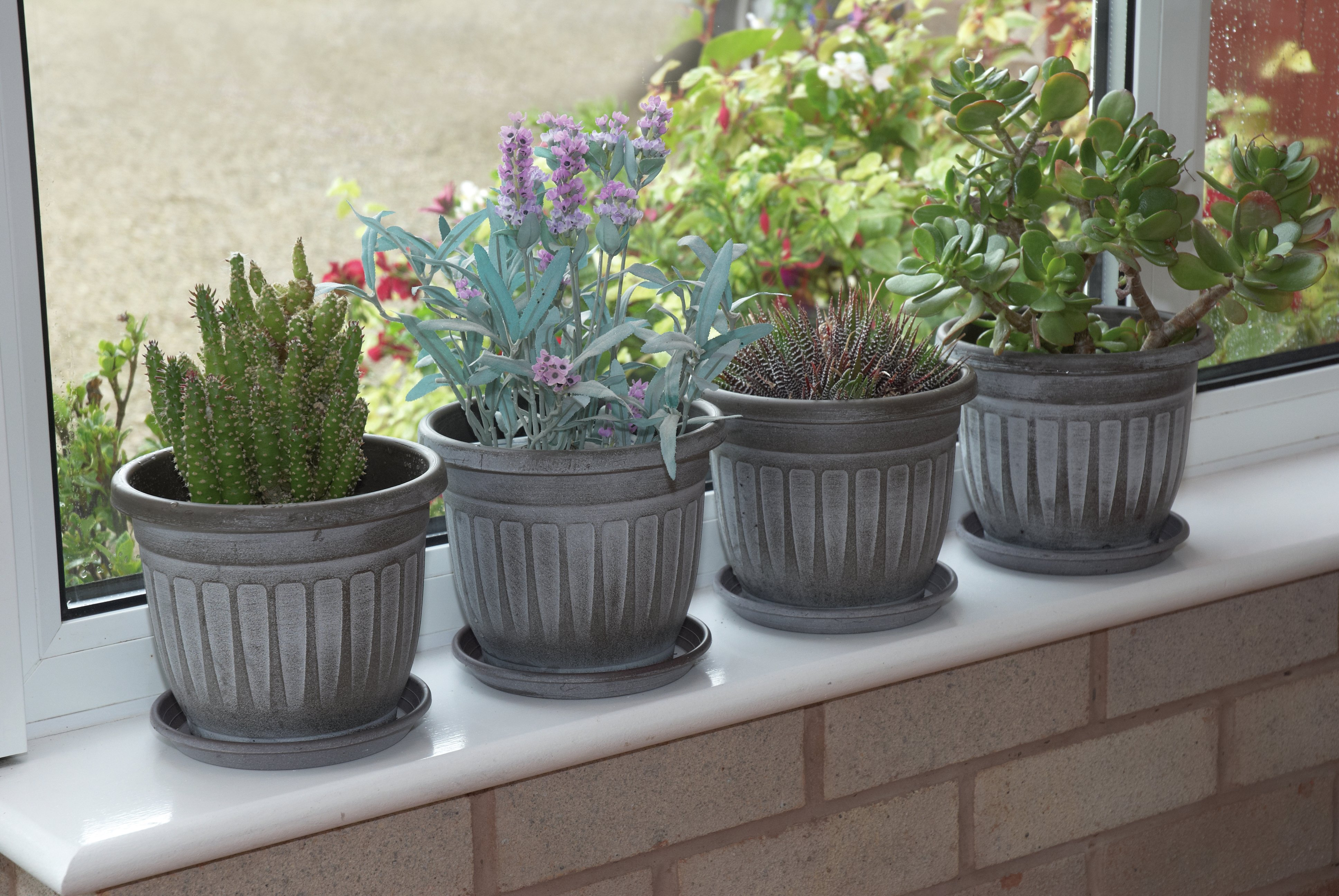 mini-planters-with-saucers-pack-of-4