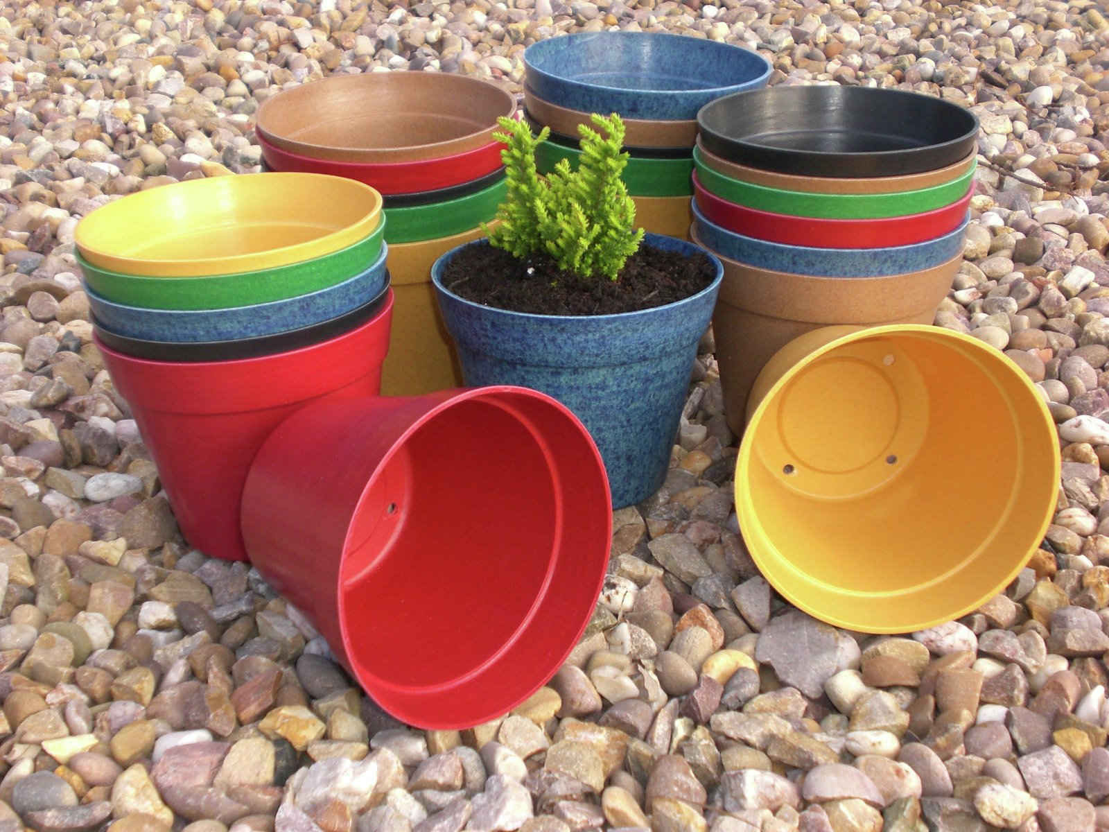 Buy Garden XP Biodegradable Mixed Colour Garden Pots 24 Pack at