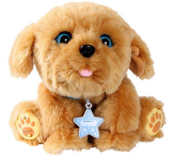Dog Toys Argod