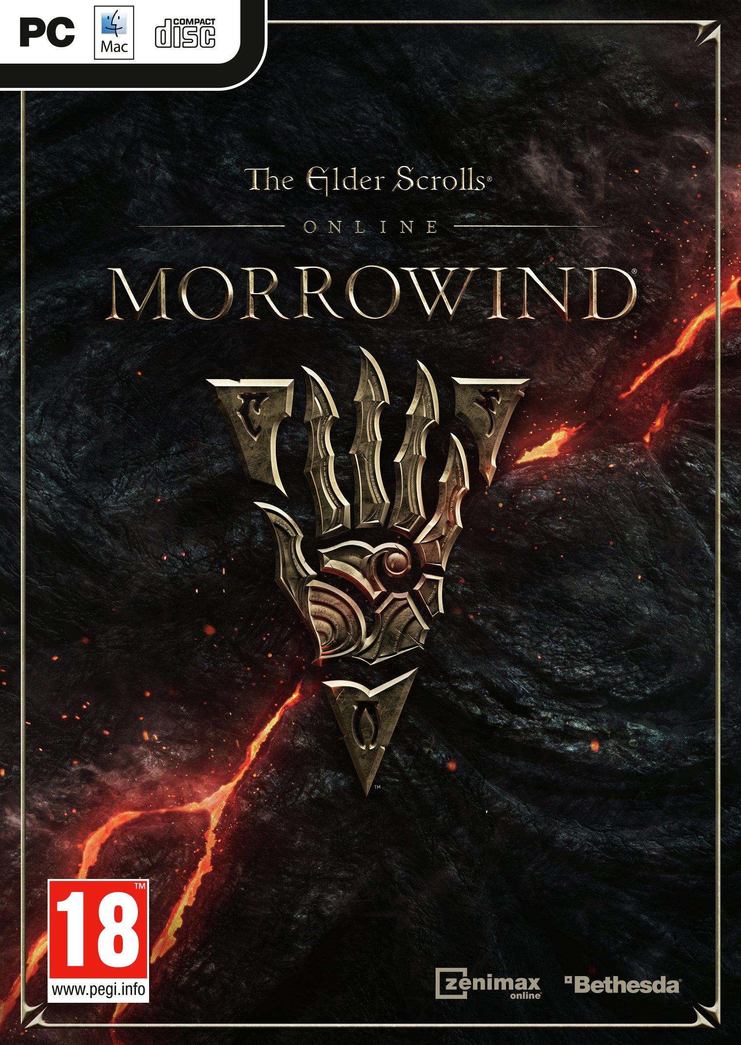 Image of Elder Scrolls Morrowind PC Game