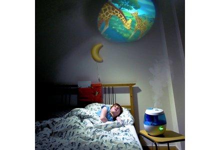 Vicks Sweet Dreams Humidifier and Projector.
