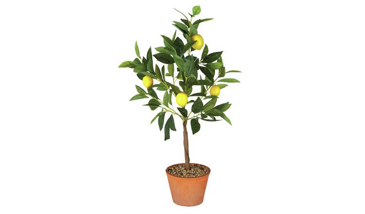 Argos Home Lisbon Faux Lemon Tree
