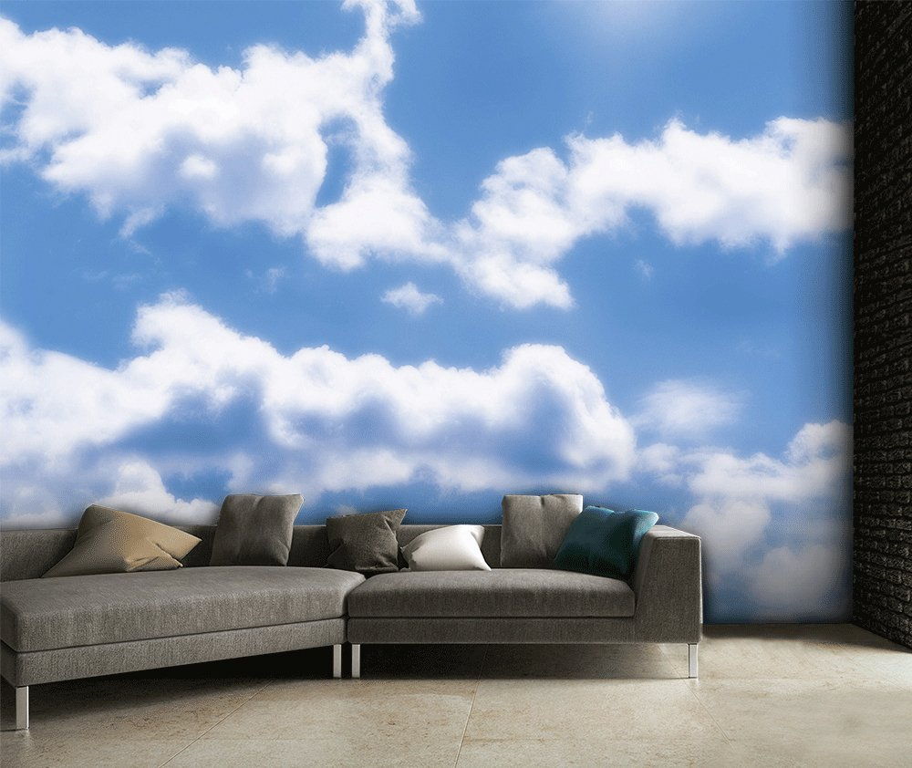 1wall sky clouds wall mural.