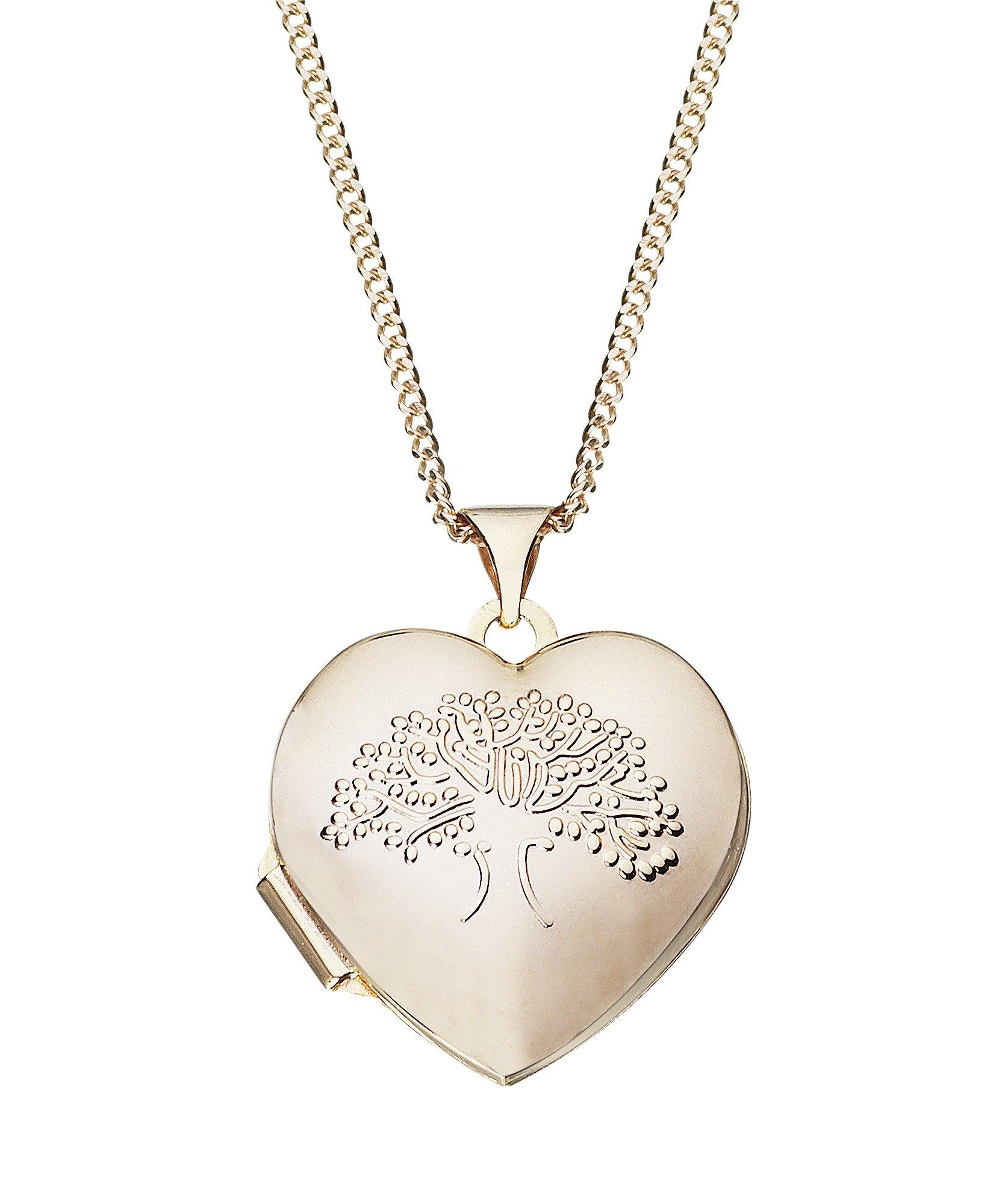 Image of Moon & Back 9ct Gold Plated Silver Family Tree Locket