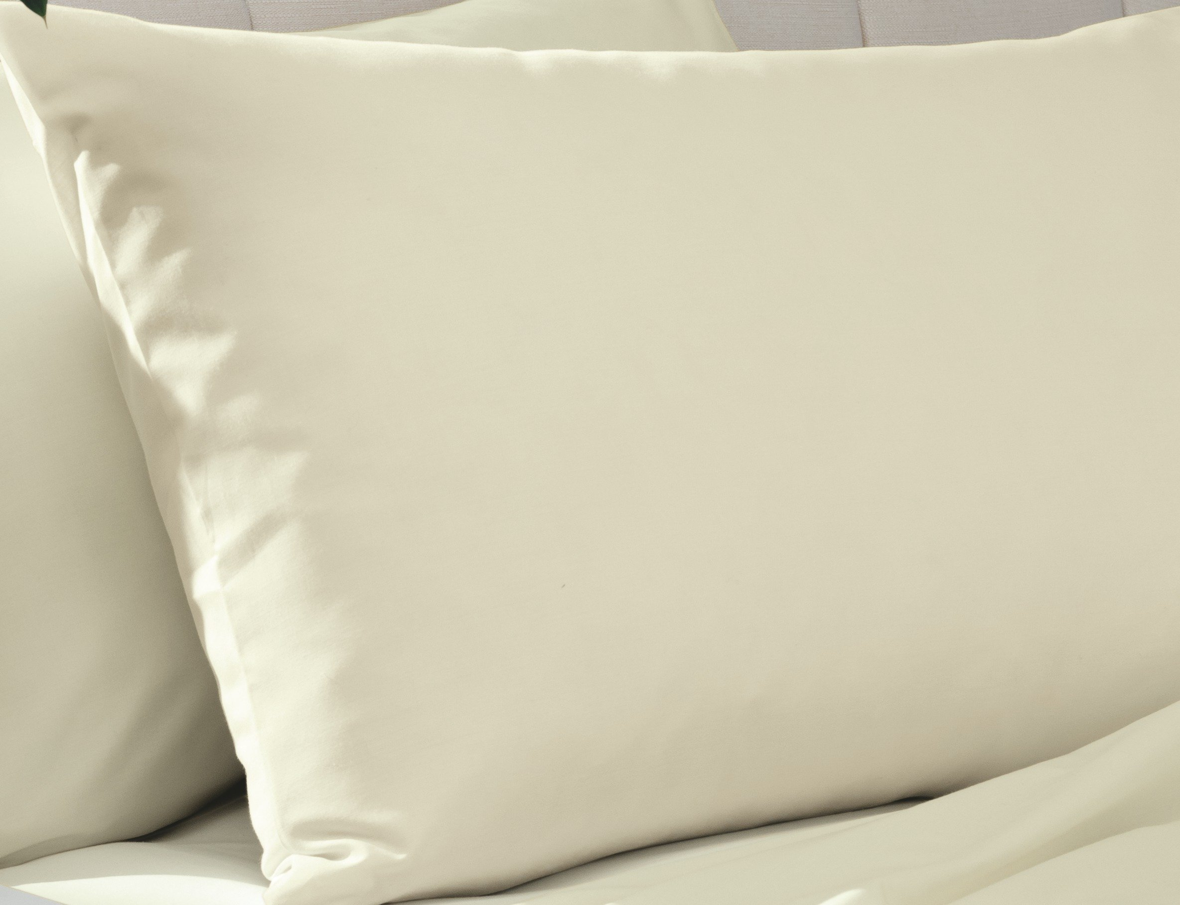 percale non iron cream pair of oxford pillowcases.