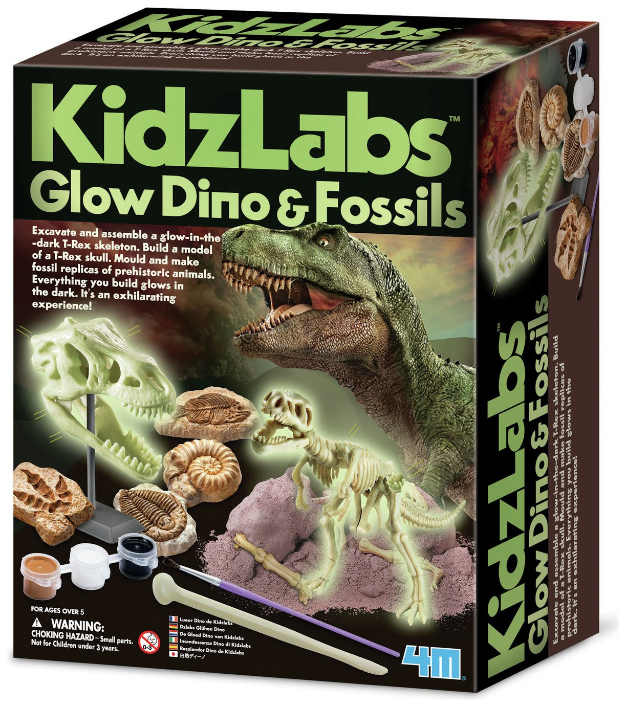 Image of 4M Kidz Labs Glow Dino and Fossils Kit.