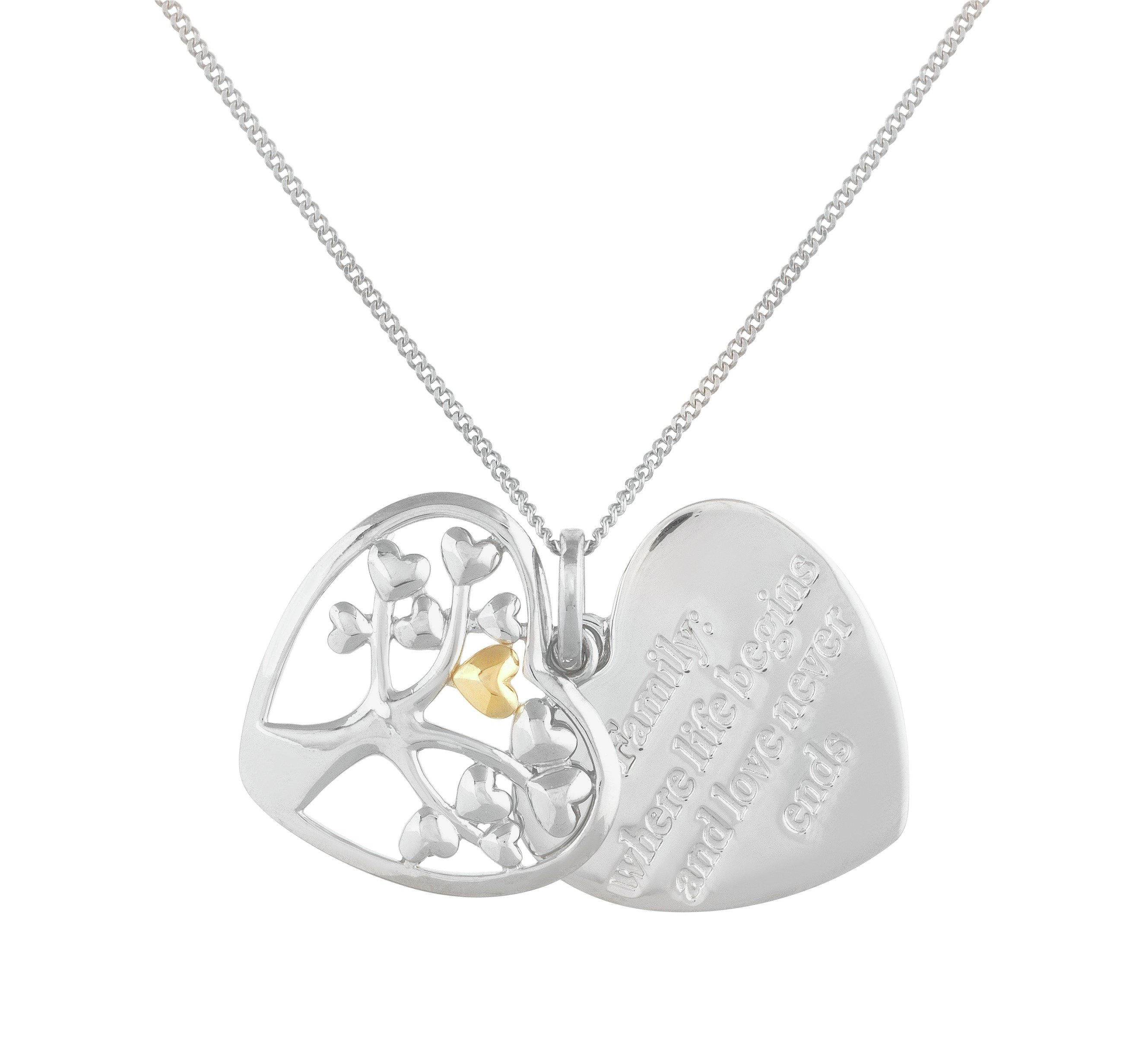 Image of Moon & Back Sterling Silver Heart Family Tree Pendant
