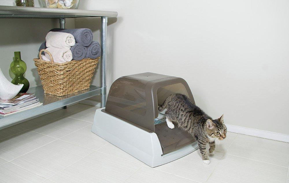 scoopfree ultra litter box6527398 - Scoopfree Litter Box