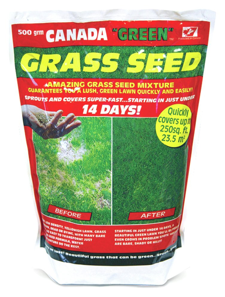 Image of Canada Green Grass Seed Pack - 500g.