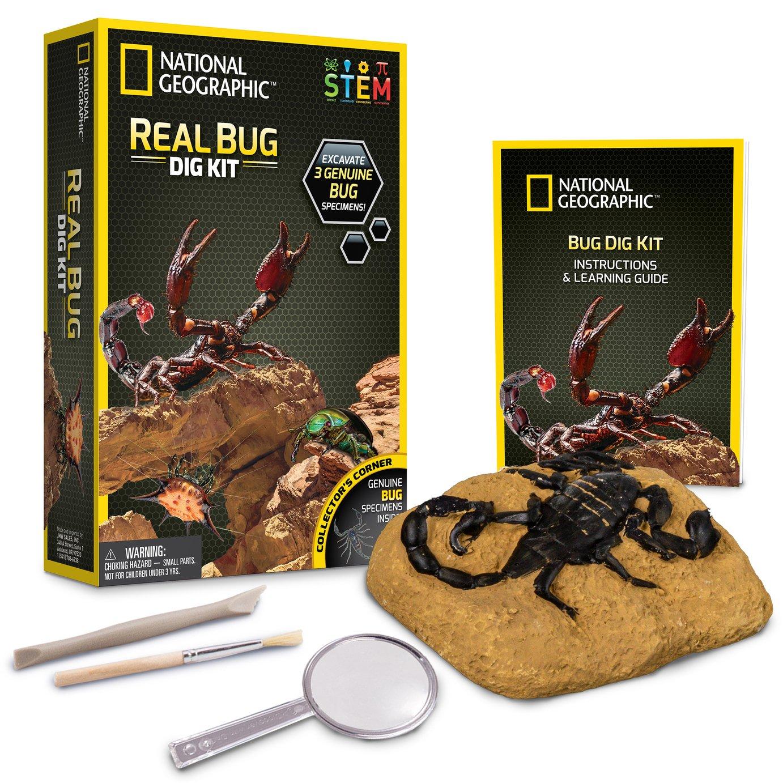 National Geographic Bug Dig Kit