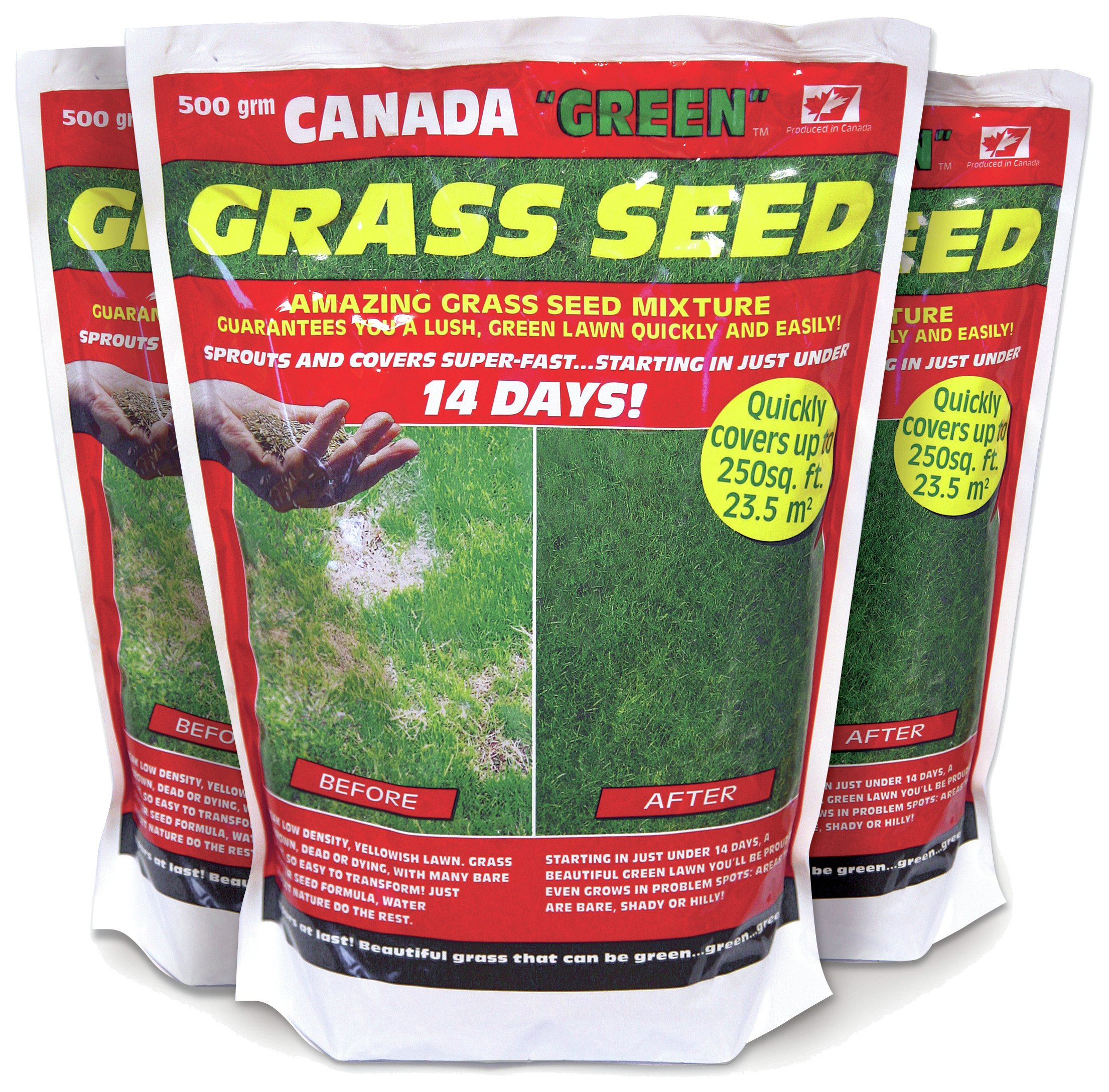 Image of Canada Green Grass Seed Pack - 500g - Buy 2 Get 1 Free.